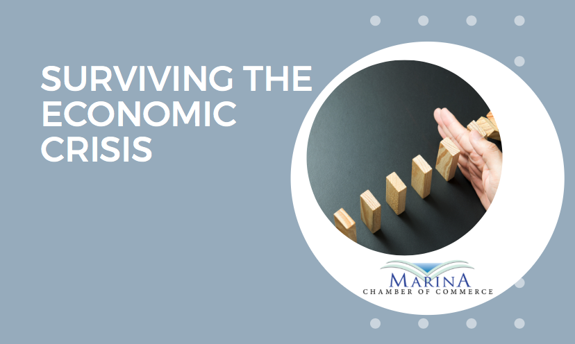 Surviving the Economic Crisis in Marina Meeting Video & Summary